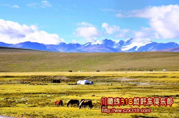川藏南线自驾游游记——毛垭大草原