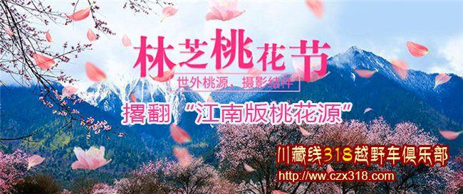 209林芝桃花节