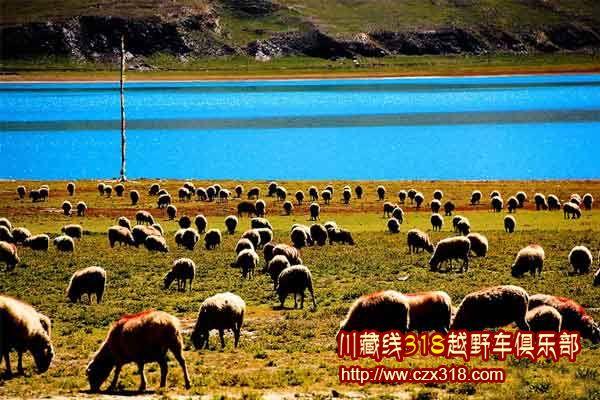 川藏线旅游