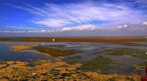 青海湖22仙女湾.jpg