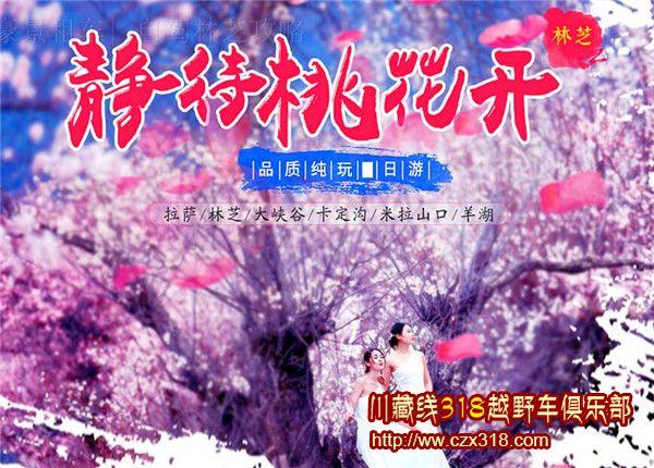 【林芝桃花节·邀约信】阳光正好,有你更好!