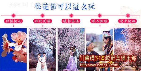 林芝桃花节的5大看点图